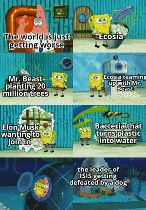 Its been a pretty good week so far: Ecosia  The world is just  getting worse  Ecosia teaming  Mr. Beast  planting 20  million trees  up with Mr.  Beast  Bacteria that  turns plastic  into water  Elon Musk  wanting to  join in  the leader of  ISIS getting  defeated by a dog Its been a pretty good week so far