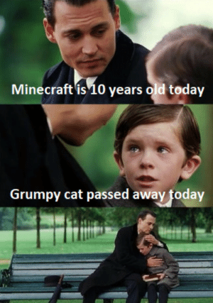A fallen hero by Joshanima MORE MEMES: ecraft is 10  Minecraft is10 years old today  Grumpy cat passed away today A fallen hero by Joshanima MORE MEMES