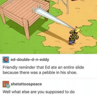 double d: ed-double-d-n-eddy  Friendly reminder that Ed ate an entire slide  because there was a pebble in his shoe.  shetattoospeace  Well what else are you supposed to do