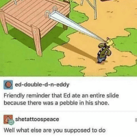 Honestly though: ed-double-d-n-eddy  Friendly reminder that Ed ate an entire slide  because there was a pebble in his shoe.  shetattoospeace  Well what else are you supposed to do Honestly though