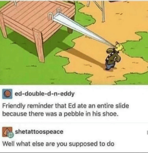 Dank, Memes, and Target: ed-double-d-n-eddy  Friendly reminder that Ed ate an entire slide  because there was a pebble in his shoe.  shetattoospeace  Well what else are you supposed to do modern problems require modern solutions by sakaaran4 MORE MEMES