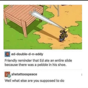 What else are you supposed to do?: ed-double-d-n-eddy  Friendly reminder that Ed ate an entire slide  because there was a pebble in his shoe.  shetattoospeace  Well what else are you supposed to do What else are you supposed to do?