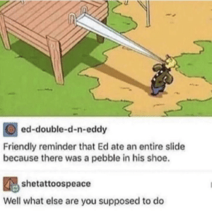 He wilding via /r/memes https://ift.tt/2BOkkhb: ed-double-d-n-eddy  Friendly reminder that Ed ate an entire slide  because there was a pebble in his shoe.  shetattoospeace  Well what else are you supposed to do He wilding via /r/memes https://ift.tt/2BOkkhb