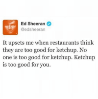 Funny, Good for You, and Meme: Ed Sheeran  @edsheeran  It upsets me when restaurants think  they are too good for ketchup. No  one is too good for ketchup. Ketchup  is too good for you. Don't follow @funny if you're easily offended 😂