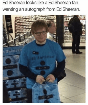 Ed Sheeran, Autograph, and Like: Ed Sheeran looks like a Ed Sheeran fan  wanting an autograph from Ed Sheeran.  d Sheera Damnit Ed