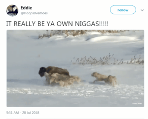 Dank, Ghetto, and Memes: Eddie  @Hoops0verhoes  Follow  IT REALLY BE YA OWN NIGGAS!!!  5:31 AM-28 Jul 2018 The whole world is a ghetto by SpaceLizardry MORE MEMES