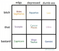 Ass, Dumb, and Thot: edgy depressed dumb-ass  bitchAries  Aquarius  Leo  Sagittarius  thot Scorpio  Cancer  Pisces  Libra  Virgo  bastard| CapricornTaurus  Gemini  @fh-horoscopes fh-horoscopes:Tag yourself