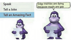 Mods = GAY: Edgy memes are dying  because mods are gay  Speak  Tell a Joke  Tell an Amazing Fact Mods = GAY