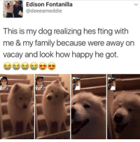 Dogs, Family, and Edison: Edison Fontanilla  @deeeameddie  This is my dog realizing hes fting with  me & my family because were away or  vacay and look how happy he got. How amazing are dogs? via /r/wholesomememes https://ift.tt/2x95Gza