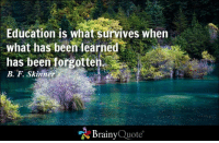 Memes, 🤖, and Html: Education is what survives when  what has been learned  has been forgotten  B. F. Skinner  Brainy  Quote Education is what survives when what has been learned has been forgotten. - B. F. Skinner https://www.brainyquote.com/quotes/quotes/b/bfskinne100064.html #brainyquote #QOTD #motivation #trees