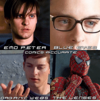 """Memes, Spider, and SpiderMan: EE MD P ET ER  BLL LUTE GECPGE S  COMICS TFCCURAHT.E  ORGANIC LU EBS TH EXL EITSES Everything wrong with Tobey's Spider-man (in my opinion) Now before you say anything negative about this.. Yes I'm doing a version of Tom and Andrew. 1. Emo Peter was stupid.. I don't know what the hell they were thinking (but I kinda like it, it made me laugh) 2. Blue Eyes. Peter's eyes aren't blue in the comics, I don't mind it but it didn't help Tobey to be """"Perfect"""" 3. Organic Webs. Where do I start.. It's just WRONG! Everything about it is wrong. 4. The lenses.. Yes the lenses of the suit weren't great. I just didn't like them at all. They looked kinda.. Evil 😂 What do you guys think? And what are the things you didn't like about Tobey's Spider-Man? But remember he's a great Peter Parker-Spider-man! No one can deny that 🙏 tobeymaguire Spiderman PeterParker Spiderman2 Spiderman3"""