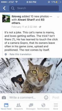Cats, Click, and Funny: ee o AT&T  8:50 PM  17%.  Search  lbioveg added 10 new photos  with Alwani Sharif and 83  others.  February 11 at 2:32 AM  It's not a joke. This cat's name is manny,  and loves getting selfies. The trick? Isn't  there He has learned to touch the click  of a camera Gopro, that its owners leave  often in his game zone, upload and  positioned. The rest comes by itself.  Write a comment  Post  O News Feed  Requests  Messages Notifications  More The future is now😹
