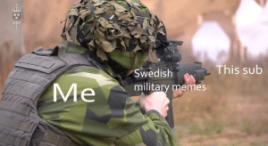 I have more than I care to admit: EE  This sub  Swedish  Me  military memes I have more than I care to admit