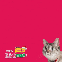 Of course I am @Waffles_the_Cat! @RealGrumpyCat what about you? In the 12 days of Friskmas my humans gave to me puri.na-salmon sponsored: EEPURINA  Friskies  Happy  Frisknnas Of course I am @Waffles_the_Cat! @RealGrumpyCat what about you? In the 12 days of Friskmas my humans gave to me puri.na-salmon sponsored