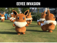 9gag, Memes, and Pokemon: EEVEE INVASION  cnblueemi I TW Which Pokemon parade do you like best? - 📸cnbluemi | TW - pokemon eevee 9gag pikachuparade
