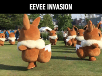 Dank, Huh, and 🤖: EEVEE INVASION Who is the better franchise mascot now, huh?  By cnblueemi | TW