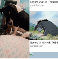 My sister just sent me this of my dog: Eeyore Quotes - YouTub  youtube.com  Eeyore in WINNIE-THE-R  nerdist.com My sister just sent me this of my dog