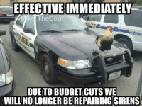 😂😂😂 @mike_thecop CopHumor CopHumorLife Humor Funny Comedy Lol Police PoliceOfficer ThinBlueLine Cop Cops LawEnforcement LawEnforcementOfficer Siren BugetCuts: EFFECTIVEIMMEDIATELY  ke TheCop  DUETO BUDGET CUTS WE  WILL NO LONGER BEREPAIRINGSIRENS 😂😂😂 @mike_thecop CopHumor CopHumorLife Humor Funny Comedy Lol Police PoliceOfficer ThinBlueLine Cop Cops LawEnforcement LawEnforcementOfficer Siren BugetCuts