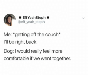 Not mad about it though (credit & consent: @sososteph): EffYeahSteph  @eff_yeah_steph  Me: *getting off the couch*  I'll be right back.  Dog: Iwould really feel more  comfortable if we went together. Not mad about it though (credit & consent: @sososteph)