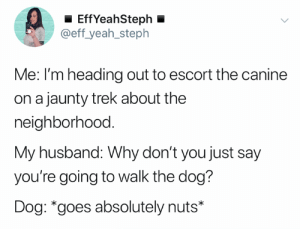 W-A-L-K (credit and consent: @eff_yeah_steph on Twitter): EffYeahSteph  @eff_yeah_steph  Me: I'm heading out to escort the canine  on a jaunty trek about the  neighborhood.  My husband: Why don't you just say  you're going to walk the dog?  Dog: *goes absolutely nuts* W-A-L-K (credit and consent: @eff_yeah_steph on Twitter)