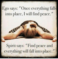"Fall, Life, and Memes: Ego says: ""Once everything falls  into place, I will find peace.""  Spirit says: ""Find peace and  everything will fall into place. It's not a battle with the ego, it's a battle with who we are being moment to moment; thus training our mind to be. Keyword: stress. . Stress forces the body and mind out of harmony, and the ego (as evolution designed) becomes hyper-focused on survival, and puts the self first. . As a result, we are geared to be self-centred, self-indulged, and self-important, and eventually full of self-loathing, self-pity and driven to be defensive. . So when under constant stress, it's a me-first mindset. If indulged too long, it becomes a personality trait unconsciously, and the new norm. . One must learn how to de-stress if you want a solid foundation for positive change. . Realise that it's not you, it's your physiology working against you; fight for change if you want more out of life. . With self-awareness, this can lead to tolerance for yourself, and importantly, for others when you understand that stress changes who people really are 🙏 . Success isn't this one thing or seven steps, it's a moment by moment campaign against the only creative force that can achieve your dreams; your mind 💯 . markiron"