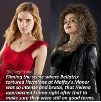 Harry Potter, Hermione, and Memes: eia  ottey  Filming the scene where Bellatrix  tortured Hermione at Malfoy's Manor  was so intense and brutal, that Helena  approached Emma right after that to >  make sure they were still on good terms. Use one word to describe Bellatrix! 😌 ♔ Tag a friend who loves Harry Potter too! 💜😻 ◇ Potterheads⚡count: 153,305