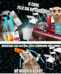 Suricate seboso · Homie, Pt-Br (Brazilian Portuguese), and International   EiCABA. FELIZ 2c921de000