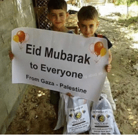 Memes, Today, and World: Eid Mubarak  to Everyone  From Gaza - Palestine Eid Mubarak to all those who are suffering & oppressed around the world & to the reverts that have no one to celebrate with. Please pray for those who can't celebrate today & those families whose loved ones didn't make it to This Eid. May Allah bless you and your families ❤️ ▃▃▃▃▃▃▃▃▃▃▃▃▃▃▃▃▃▃▃▃ @abed.alii 📝