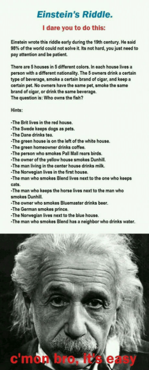Beer, Cats, and Dogs: Einstein's Riddle.  I dare you to do this:  Einstein wrote this riddle early during the 19th century. He said  98% of the world could not solve it. Its not hard, you just need to  pay attention and be patient.  There are 5 houses in 5 different colors. In each house lives a  person with a different nationality. The 5 owners drink a certain  type of beverage, smoke a certain brand of cigar, and keep a  certain pet. No owners have the same pet, smoke the same  brand of cigar, or drink the same beverage.  The question is: Who owns the fish?  Hints:  The Brit lives in the red house.  -The Swede keeps dogs as pets.  The Dane drinks tea  The green house is on the left of the white house.  -The green homeowner drinks coffee  The person who smokes Pall Mall rears birds  -The owner of the yellow house smokes Dunhill.  The man living in the center house drinks milk.  -The Norwegian lives in the first house  -The man who smokes Blend lives next to the one who keeps  cats.  The man who keeps the horse lives next to the man who  smokes Dunhill  -The owner who smokes Bluemaster drinks beer  The German smokes prince.  -The Norwegian lives next to the blue house  -The man who smokes Blend has a neighbor who drinks water  c'mon bro, it's easy Lets see who can solve the Einsteins riddle