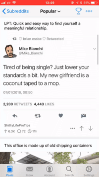 Bailey Jay, Lpt, and Guess: eir  13:49  KSubreddits Popular  LPT: Quick and easy way to find yourself a  meaningful relationship  t brian essbe Retweeted  Mike Bianchi  @Mike Bianchi  Tired of being single? Just lower your  standards a bit. My new girlfriend is a  coconut taped to a mop  01/01/2016, 00:50  2,200 RETWEETS 4,443 LIKES  ShittyLifeProTips  T6.3K 72 11h  This office is made up of old shipping containers  Posts  Inbox  Account  Search  Settings I guess I just need to find a coconut now