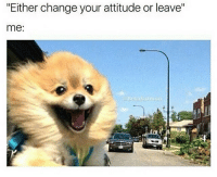 "I'm out bih @betasalmon: ""Either change your attitude or leave""  me: I'm out bih @betasalmon"