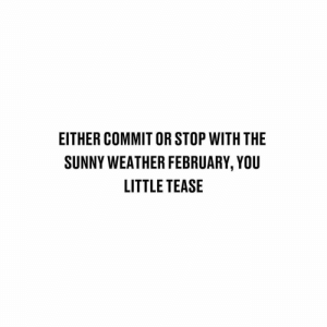 Memes, Weather, and 🤖: EITHER COMMIT OR STOP WITH THE  SUNNY WEATHER FEBRUARY, YOU  LITTLE TEASE Teasing us.