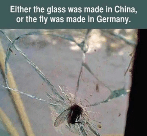 Glass was made in Tesla: Either the glass was made in China,  or the fly was made in Germany. Glass was made in Tesla
