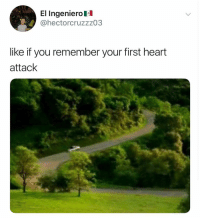 Memes, Best, and Heart: El Ingenierol  @hectorcruzzz03  like if you remember your first heart  attack Follow @ladbible for the best pics on IG