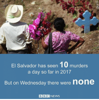 Memes, Bbc News, and Wednesday: El Salvador has seen 10 murders  a day so far in 2017  But on Wednesday there were  none  BBC NEWS 13 JAN: A rare day without a killing in El Salvador bbc.in-elsalvador ElSalvadaror BBCGoFigure BBCNews @BBCNews