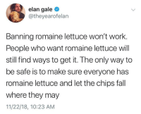 Fall, Work, and Chips: elan gale  @theyearofelan  Banning romaine lettuce won't work.  People who want romaine lettuce will  still find ways to get it. The only way to  be safe is to make sure everyone has  romaine lettuce and let the chips fall  where they may  11/22/18, 10:23 ANM Criminals always find a way