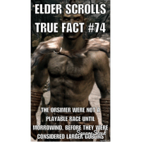 Sorry about the huge watermark~Kneeco orsimer orcs elderscrollsoblivion skyrim elderscrollstruefact elderscrollsnerd videogamefacts skyrimspecailedition daedra dm dmmeh dmme: ELDER SCROLLS  TRUE FACT #74  THE ORSIMER WERE NOT A  PLAYABLE RACE UNTIL  MORROWIND, BEFORE THEY WERE  CONSIDERED LARGER  mematic net Sorry about the huge watermark~Kneeco orsimer orcs elderscrollsoblivion skyrim elderscrollstruefact elderscrollsnerd videogamefacts skyrimspecailedition daedra dm dmmeh dmme