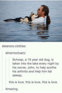 """Clothes, Fall, and Love: eleanors-clothes:  silvernoctuary:  Schoep, a 19 year old dog, is  taken into the lake every night by  his owner, John, to help soothe  his arthritis and help him fall  asleep.  this is love. this is love. this is love.  Amazing <p>This is true love. via /r/wholesomememes <a href=""""https://ift.tt/2IjNt9F"""">https://ift.tt/2IjNt9F</a></p>"""