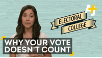 College, Memes, and Rogue: ELECTORAL  COLLEGE  WHY YOUR VOTE  DOESN'T COUNT What if the Electoral College goes rogue? There's a campaign to convince a few of the 538 members to reverse the election results when they meet on Monday.