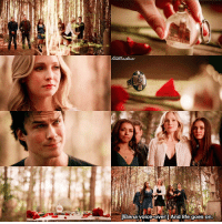 [8x16 - I Was Feeling Epic] They all brought something that was important for their relationship with Stefan 😭❤ (Elena left the necklace there) ⠀ Thank you so much for 161k!!! ❤ ⠀ My edit give credit [ damonsalvatore elenagilbert carolineforbes stefansalvatore tvd thevampirediaries vampirediaries tvdforever 8x16|161k]: Elena voice-over:1And life goes on. [8x16 - I Was Feeling Epic] They all brought something that was important for their relationship with Stefan 😭❤ (Elena left the necklace there) ⠀ Thank you so much for 161k!!! ❤ ⠀ My edit give credit [ damonsalvatore elenagilbert carolineforbes stefansalvatore tvd thevampirediaries vampirediaries tvdforever 8x16|161k]