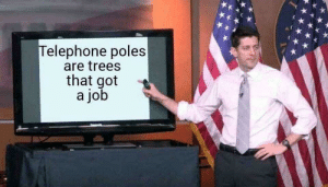 Wood you like to apply? by wienhoffer MORE MEMES: elephone poles  are trees  that got  a job Wood you like to apply? by wienhoffer MORE MEMES