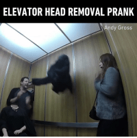 Dank, Head, and Prank: ELEVATOR HEAD REMOVAL PRANK  Andy Gross I would have freaked out too 😱 By Andy Gross