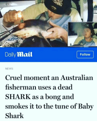 Dumb, News, and Shark: ELI  0  Daily Mail  Follow  NEWS  Cruel moment an Australian  fisherman uses a dead  SHARK as a bong and  smokes it to the tune of Baby  Shark Dumb Australian