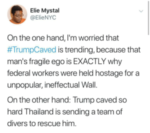 The Thais know a cave when they see it by mofahu MORE MEMES: Elie Mystal  @ElieNYOC  On the one hand, l'm worried that  #TrumpCaved is trending, because that  man's fragile ego is EXACTLY why  federal workers were held hostage for a  unpopular, ineffectual Wall.  On the other hand: Trump caved so  hard Thailand is sending a team of  divers to rescue him The Thais know a cave when they see it by mofahu MORE MEMES