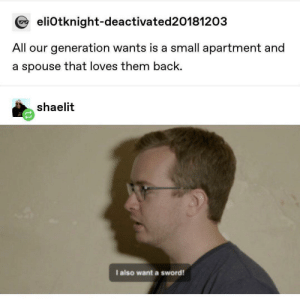 Me_irl: @ eliOtknight-deactivated20181203  All our generation wants is a small apartment and  a spouse that loves them back.  shaelit  I also want a sword! Me_irl