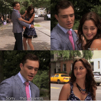 Cute, Gg, and Love: Elite nyc 99  Sorry... the squirrels. Haha this is such a cute New York City Chair moment 💖 Photo Credit: @elite_nyc_gg Chair Love TrueLove OTP Chuck ChuckBass Blair BlairWaldorf Manhattan Elite UpperEastSide NewYorkCity NYC EdWestwick LeightonMeester Follow FollowMe FollowBack GossipGirl GG Xoxo