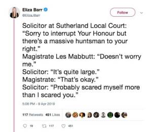 """Sorry, Okay, and Quite: Eliza Barr  @ElizaJBarr  FollowV  Solicitor at Sutherland Local Court:  """"Sorry to interrupt Your Honour but  there's a massive huntsman to your  right.""""  Magistrate Les Mabbutt: """"Doesn't worry  me.""""  Solicitor: """"It's quite large.""""  Magistrate: """"That's okay.""""  Solicitor: """"Probably scared myself more  than I scared you.""""  5:08 PM -9 Apr 2019  117 Retweets 451 Likes  919 117 ㅇ 451"""