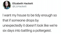 Dank, My House, and Twitter: Elizabeth Hackett  @LizHackett  I want my house to be tidy enough so  that if someone drops by  unexpectedly it doesn't look like we're  six days into battling a poltergeist. Excuse the mess, we've been possessed. 😜  (via @LizHackett on Twitter)