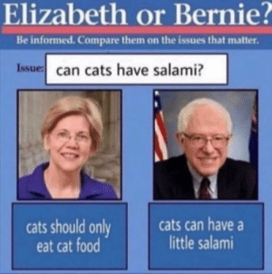 Honest answers, honest folk.: Elizabeth or Bernie?  Be informed. Compare them on the issues that matter.  Issue can cats have salami?  cats can have  little salami  cats should only  eat cat food Honest answers, honest folk.