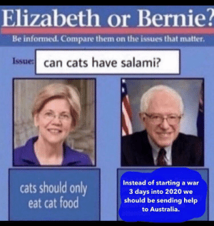 Can we?: Elizabeth or Bernie?  Be informed. Compare them on the issues that matter.  Issue: can cats have salami?  Instead of starting a war  3 days into 2020 we  should be sending help  cats should only  eat cat food  deserv  to Australia.  attention Can we?